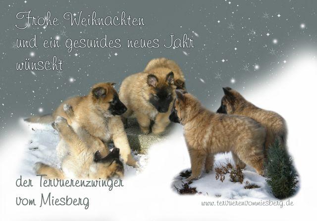 Miesberg_2013ho