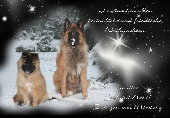 Miesberg_Weihnachten2012hom